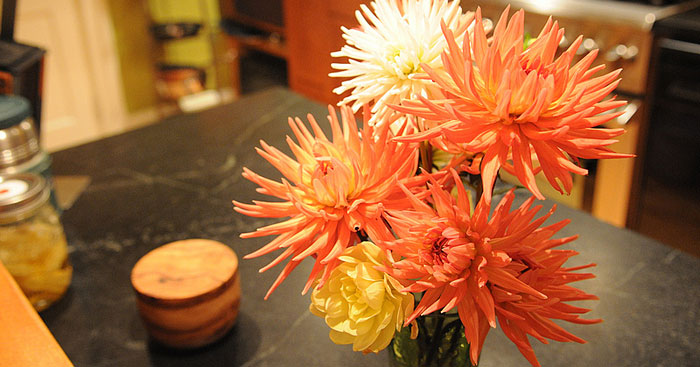 how to get dahlias to last longer in bouquets