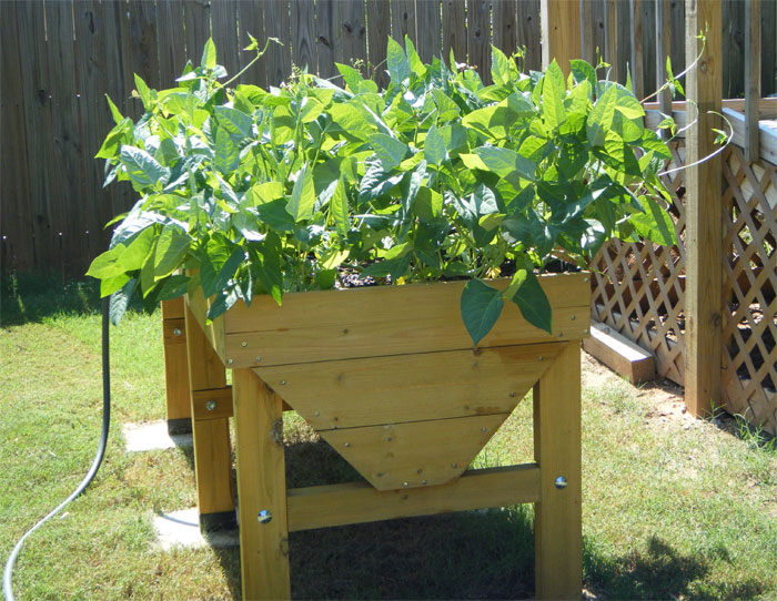 From The Reviews  Vegtrug Keeps Crops Out Of Backyard
