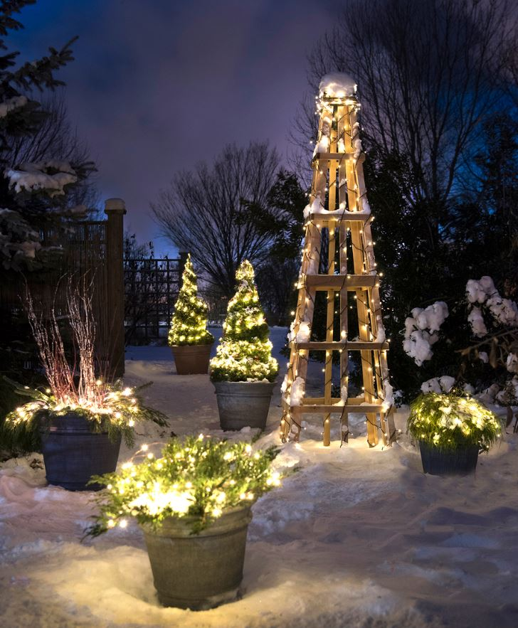 Garden Obelisks in Winter