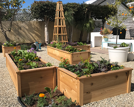 Lawn-to-Garden Makeover with CedarLast Raised Beds