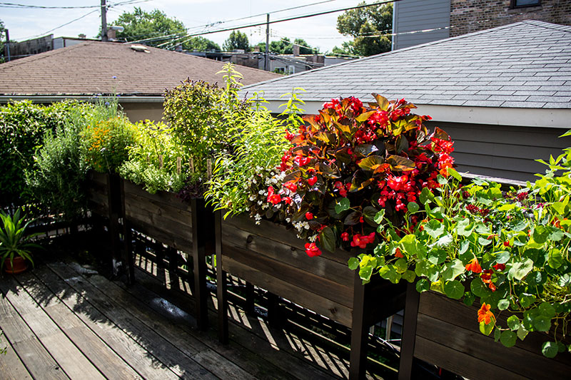 Elevated planters on deck