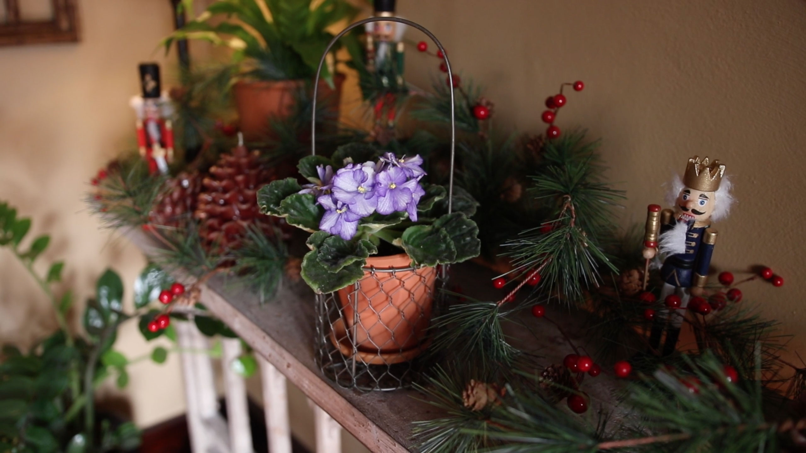 african violet pot on a mantel