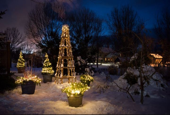 Snowy garden structures, pots and shrubs lit up with fairy lights